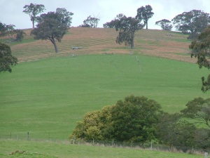 Catchment planning in action hills and streams protected, pasture on the mid slopes
